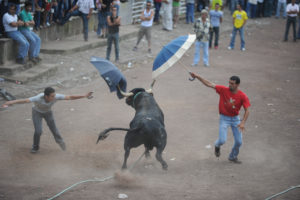 Rope Bullfights